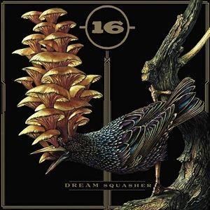 輸入盤 16 / DREAM SQUASHER [CD]|starclub