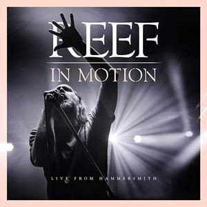 輸入盤 REEF / IN MOTION [CD+BLU-RAY]|starclub