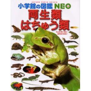 本 ISBN:9784092172067 松井正文/指導・執筆 疋田努/指導・執筆 太田英利/指導・...