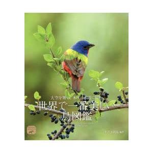 大空を舞い、木々に水辺に佇む世界で一番美しい鳥図鑑