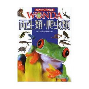 両生類・爬虫類