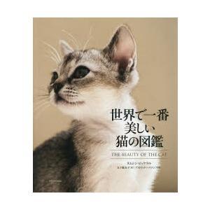 世界で一番美しい猫の図鑑|starclub