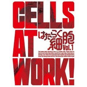はたらく細胞 1(完全生産限定版) [Blu-ray]|starclub