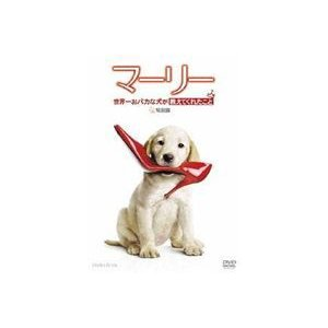 マーリー 世界一おバカな犬が教えてくれたこと <特別編> [DVD]