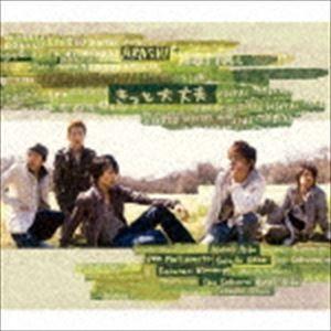 嵐 / きっと大丈夫 [CD]|starclub