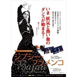ジプシー・フラメンコ [DVD]|starclub