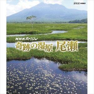 NHKスペシャル 奇跡の湿原 尾瀬 [Blu-ray]|starclub