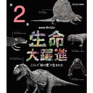 NHKスペシャル 生命大躍進 第2集 [Blu-ray]|starclub