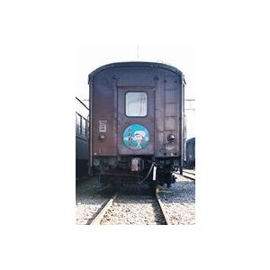 鉄道車両形式集4 大井川鐵道旧型客車 [DVD]|starclub