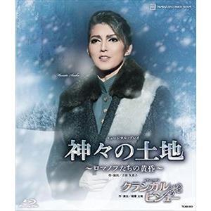 宙組宝塚大劇場公演 ミュージカル・プレイ 『神...の関連商品6