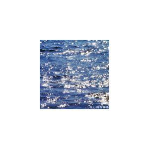 熊谷育美 / 強く [CD]|starclub