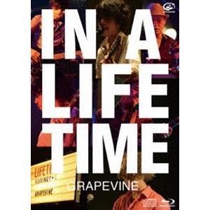 種別:Blu-ray GRAPEVINE 解説:GRAPEVINE代表作アルバム「Lifetime」...
