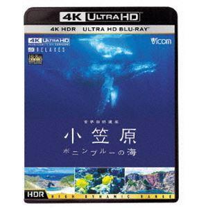 ビコム 4K Relaxes 世界自然遺産 小笠原 〜ボニンブルーの海〜 [Ultra HD Blu-ray]|starclub
