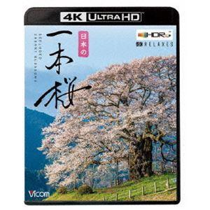 ビコム 4K Relaxes 日本の一本桜【4K・HDR】 [Ultra HD Blu-ray]|starclub
