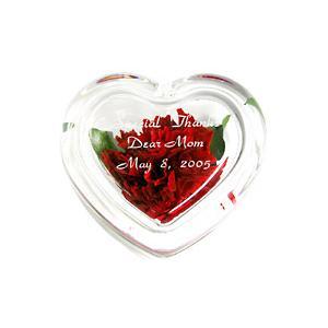 「プリザーブドフラワー ハートガラスケース入 カーネーション」 (誕生日 記念日 結婚祝い 贈り物 名入れ) 『代引き不可商品』|starkids