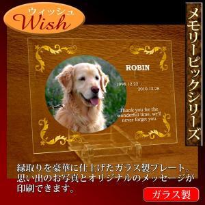 ペット メモリアル ガラスプレート「Wish ウィッシュ」 オーダーメイド製作!ペットの仏壇仏具 写真 名入れ 御仏前 記念品|starkids
