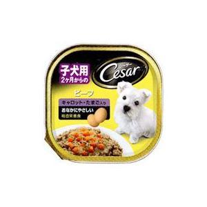 MARS japan シーザー 2ヶ月からの子犬用 ビーフ キャロット・たまご入り 100g starlive