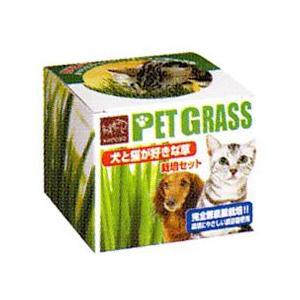 エイムクリエイツ 犬と猫が好きな草の栽培セット|starlive