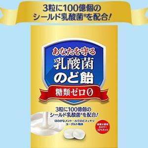 乳酸菌のど飴 3粒に100億個のシールド乳酸菌を配合 63g×3 / うすき製薬|starmall