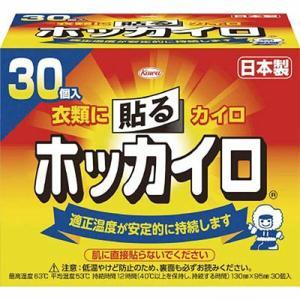 ホッカイロ 貼るタイプ レギュラー 30個 / 興和新薬 ホッカイロ