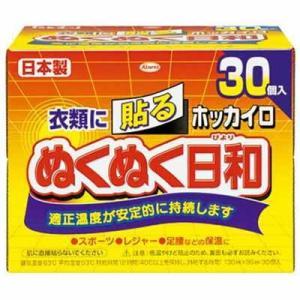ホッカイロ ぬくぬく日和 貼るレギュラー 30個 / 興和新薬 ホッカイロ