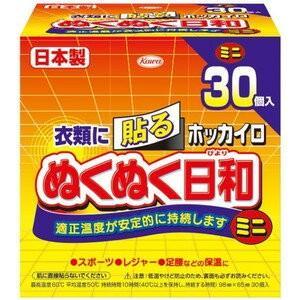 ホッカイロ ぬくぬく日和 貼るミニ 30個 / 興和新薬 ホッカイロ