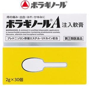 武田薬品工業 ボラギノールA 注入軟膏 2g×30個 (指定第2類医薬品)|starmall