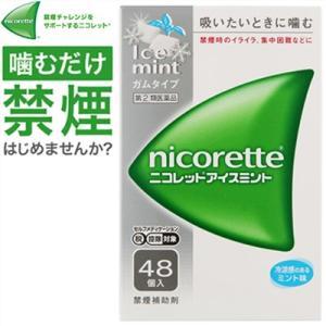 武田薬品工業 ニコレットアイスミント 48個 (指定第2類医薬品)|starmall