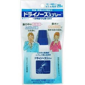 ドライノーズスプレー 20mL / 日本臓器製薬|starmall