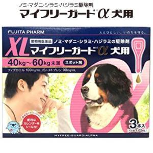 送料無料  マイフリーガードα スポット剤 XL 40-60kg未満 (犬用) 3本入 *フジタ製薬(DSFA)|starmall