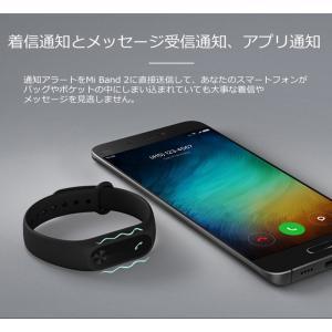 【世界シェアNo.1】【正規品1年保証 | 国内技適認証済】スマートウォッチ Xiaomi Mi Band 2 活動量計 歩数計 心拍数計 睡眠モニター 着信/SMS/LINE通知|starq-online|11