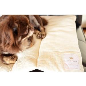ORGANIC SOFTMAT / オーガニック ソフトマット2色 犬 ねこ ペット マット|starry