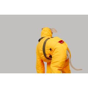 イタグレ 服 vemvem ヴェムヴェム グラヴィティ:スーパーフェザー サニーイエロー サイズ S/M/L/XL イタリアングレーハウンド ウィペット専用コート|starry|07