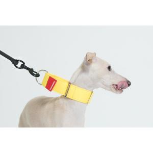 vemvem ヴェムヴェム サークル:フィールフリー イエロー サイズL カラー 首輪 犬 イタリアングレーハウンド|starry