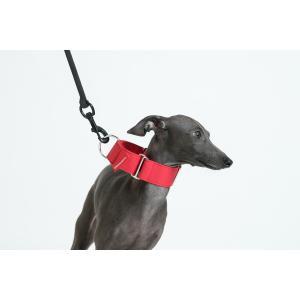 vemvem ヴェムヴェム サークル:フィールフリー レッド サイズL カラー 首輪 犬 イタリアングレーハウンド|starry