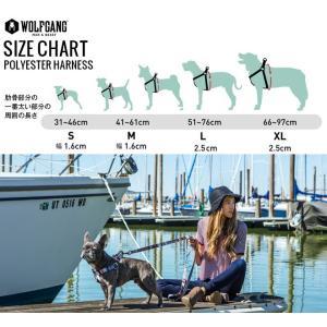 犬ハーネスM size 胴囲:41〜61cm ウルフギャング WOLFGANG  Antiqua HARNESS   / アメリカンメイド|starry|05
