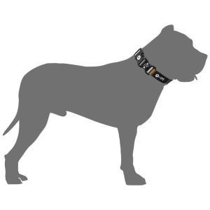 犬 首輪  ウルフギャング WOLFGANG LokiWolf Lサイズ アメリカンメイド|starry|03