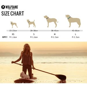 犬 首輪 ウルフギャング WOLFGANG LosMuertos COLLAR Sサイズ アメリカンメイド ネコポス便対応|starry|04