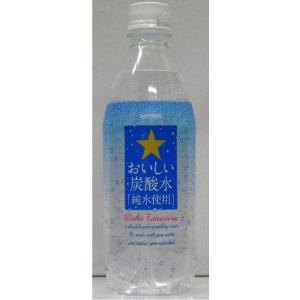 炭酸水 ポッカサッポロ おいしい炭酸水 純粋使用  PET500ml 1ケース