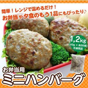 ミニハンバーグ 1.2kg 約30個入り 業務用 冷凍 冷凍食品 温めるだけ お弁当用 国内製造 大容量 お買い得 ハンバーグ お弁当 便利|starzen-k