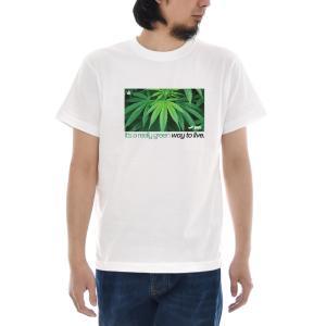大麻 Tシャツ ジャスト CANNABIS BOX 半袖Tシャツ メンズ おしゃれ 大きいサイズ 麻 マリファナ カンナビス ガンジャ 柄 白 S M L XL XXL XXXL 3L 4L ブランド|stay