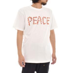 フォトTシャツ ホヤ アンド ピース HOYA & PEACE Keisuke Hirai Collection 半袖Tシャツ 写真 景色 メンズ レディース 大きいサイズ S M L XL 3L 4L ブランド stayblue