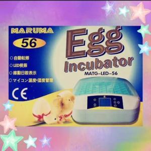 鳥のLED孵卵器 PSE認証 ふ卵器 孵化器 インキュベーター 最大56個   ●温度設定範囲:35...