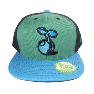 SeedleSs シードレス 2 tone sprout snap back cap|steelo