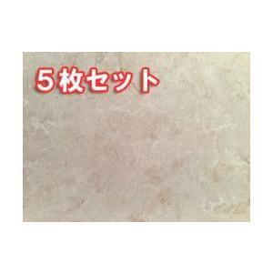 大理石 インドネシアベージュ 400*400 本磨仕上 5枚セット 【送料別途】|stgarden-seki