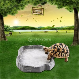 【ノーブランド品】テラリウム用 爬虫類 カメ エサ皿 水飲み ボウル (グレー)|stk-shop