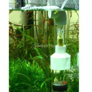 ノーブランド品水槽用 観賞魚 孵化器 インキュベーター シクリッド タンブラー L