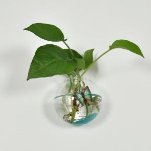 ノーブランド品 ホーム インテリア 水耕栽培用 ガラス製 吊下げ式 ハンギング 花瓶 ボトル ボール型 12cm (クリア) stk-shop