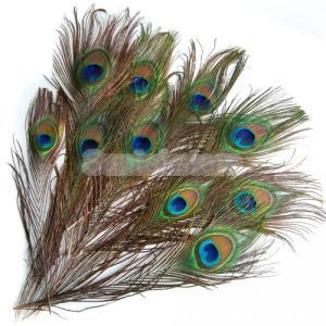 SONONIA 20セット 装飾用 手芸 孔雀 羽根 羽 フェザー