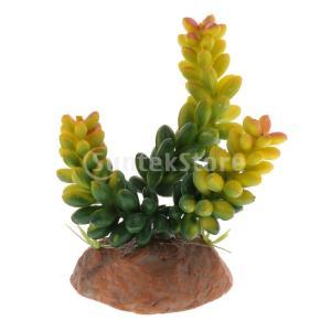 説明: 生き生きとした植物の見通しは、ペットのストレスを和らげるのに役立ちます。爬虫類や両生類のため...